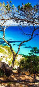 Es Calo, Formentera von Van Oostrum Photography