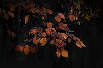 Kunst mit malerischen Blättern industriellen schwarz von Rob Visser