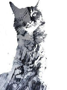 Kattenkunst - Diva 8 van