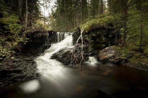 Kleine waterval in de Noorse bossen