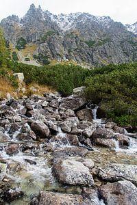 Waterfall in Slovakia van