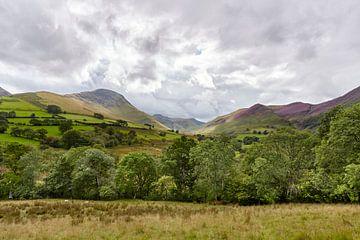 Englische Landschaft von Graham Forrester
