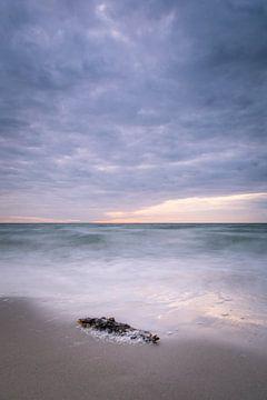 Küste der Ostsee am Darß von Tobias Luxberg