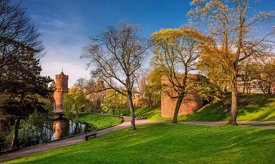 Het Kronenburg park in Arnhem in het avondlicht van Harrie Muis