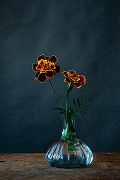 Foto print   oranje rode en gele  bloemen   modern   botanisch   fotografie