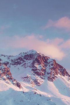 Roze bergen sur Olivier Peeters