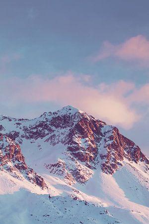 Roze bergen van Olivier Peeters