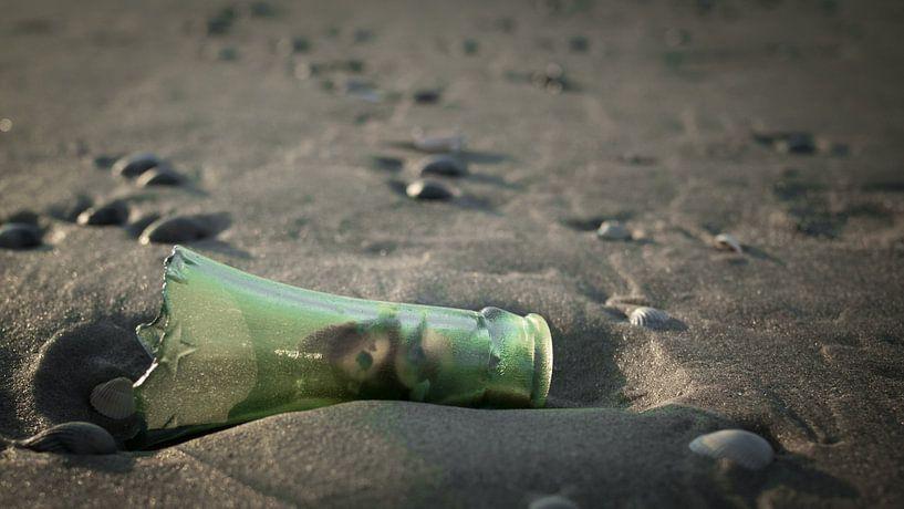 Message in a bottle van Lex Schulte