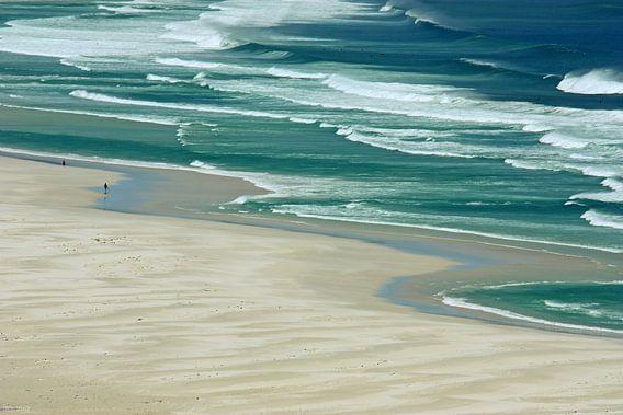 southafrica ... de strandloper van Meleah Fotografie