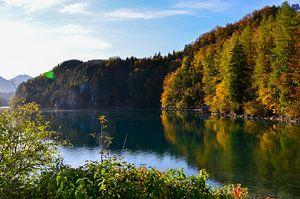 Herfstkleurige bomen aan de oever van een Beiers meer van LuCreator