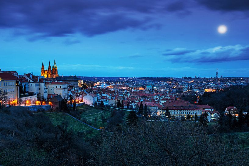 De skyline van de stad Praag van Frank Herrmann