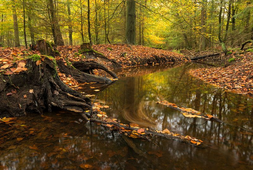 Leuvenumse Beek in herfstkleuren van Raoul Baart