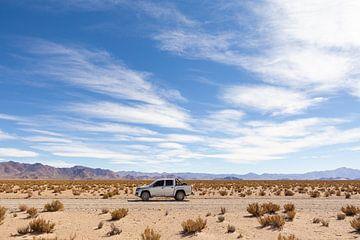 Woestijn Reiziger van Merijn Geurts