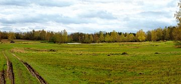 Natuurpark Blockheide in Waldviertel van Leopold Brix