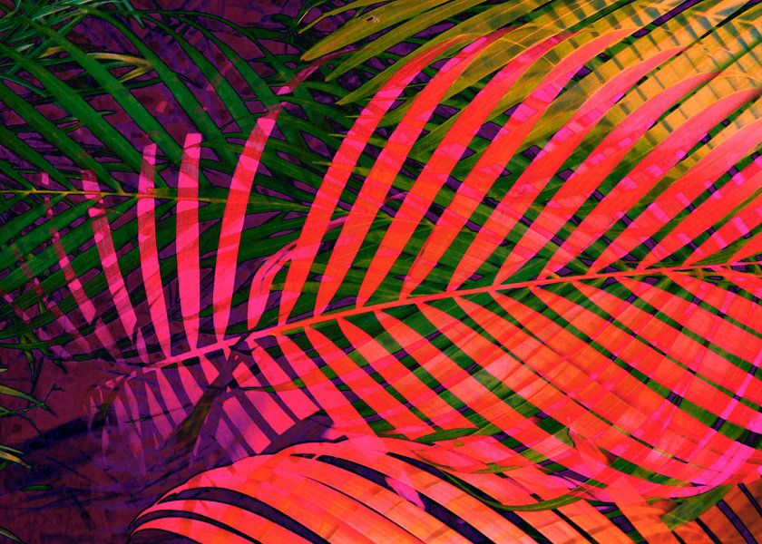 COLORFUL TROPICAL LEAVES no6 van Pia Schneider