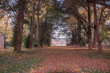 Villa in bos sur Fatima Maria Mernisi
