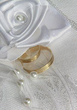 Ringen von Marcel van der Kolk