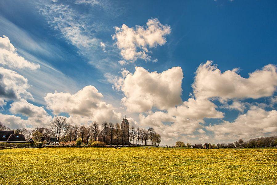Een veld vol paardebloemen en het kerkje van Jelsum, Friesland.