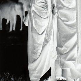 Tafel 1 der Diptychon-Mönche beim Baden von Elefanten von Affect Fotografie