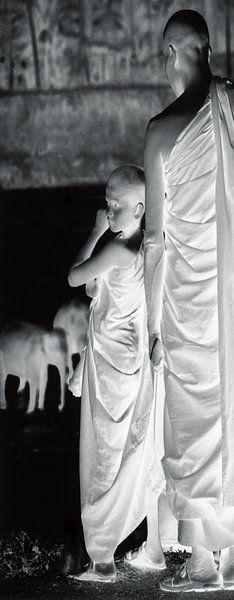 Paneel 1 van tweeluik monniken bij badende olifanten van Affect Fotografie