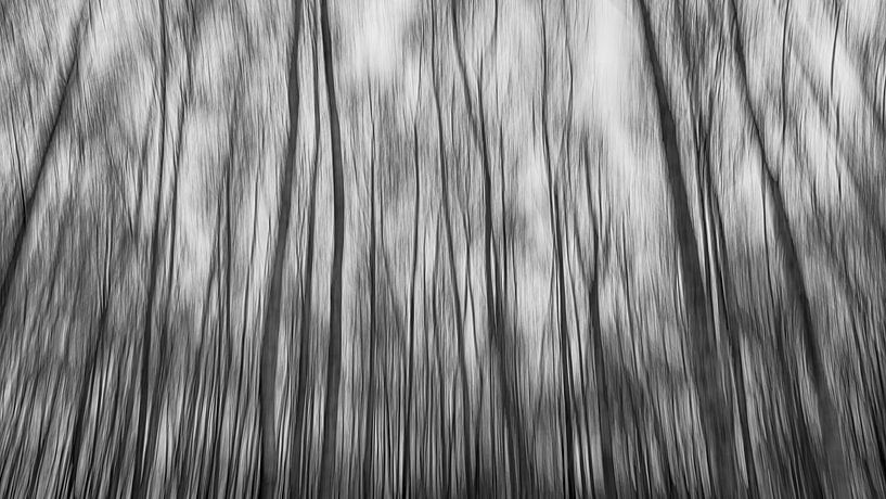 Abstract bos van Mark Bolijn