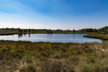 Niedermoor 2 in NP Maasduinen von Jaap Mulder