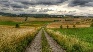 Frankisch landschap van Andrea Meister