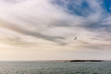 Meereslandschaften 2.0 III von Steven Goovaerts