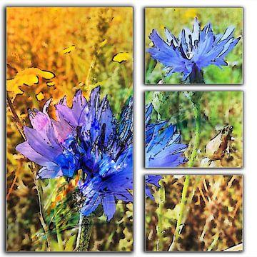 blauwe korenbloemen in 4 delen von Joke te Grotenhuis