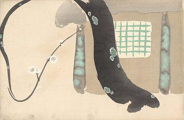 Pflaumenbaum am Dachvorsprung des Kamisaka Sekka, 1909