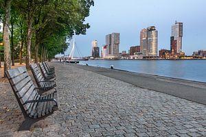 Rotterdam Kop van zuid (blauwe uurtje) van