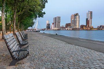 Rotterdam Skyline Kop van zuid (blauwe uurtje)