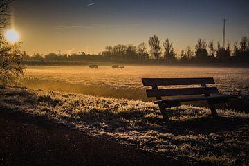 Ein neuer Tag beginnt von ErikJan Braakman