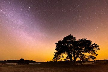 Die Galaxie über dem schönen Hulshorstersand von Eelke Brandsma