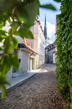 Straat in Estland van Ellis Peeters