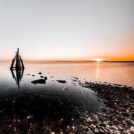 Arendshoofd, Den Osse, Zeeland von Eddy Westdijk