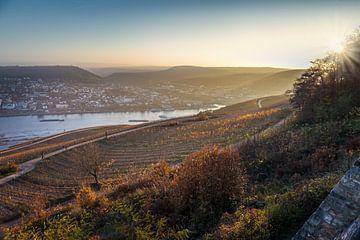 Blick vom Niederwald auf den Rhein bei Bingen van Christian Müringer