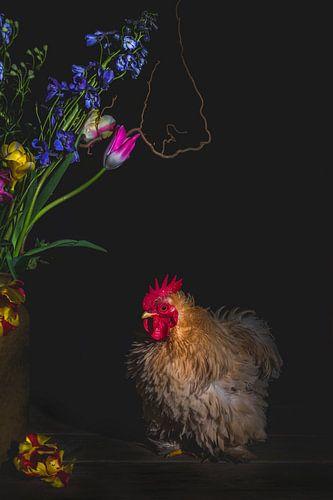 The Rooster De haan