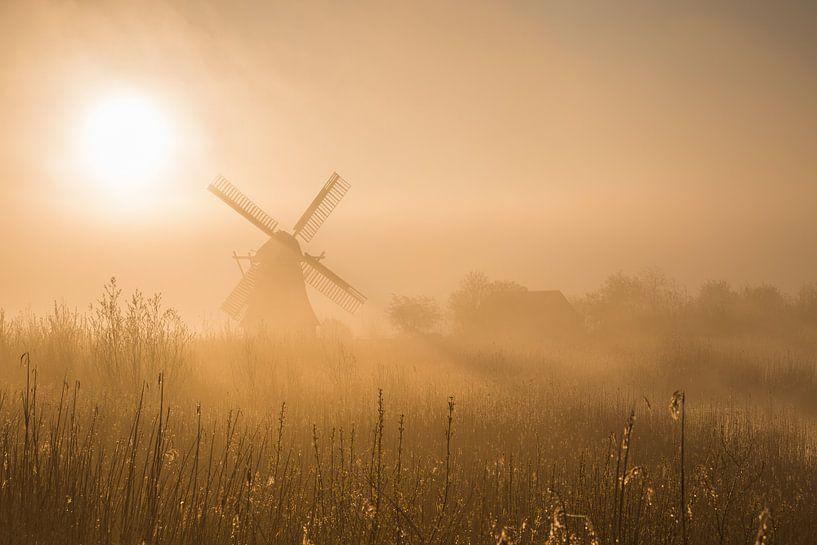 De Noordermolen (Noorddijk, Gr.) in ochtendlicht van goud. van Ton Drijfhamer