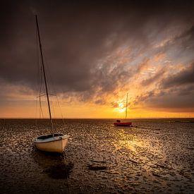 Le dernier soleil sur Jan Koppelaar