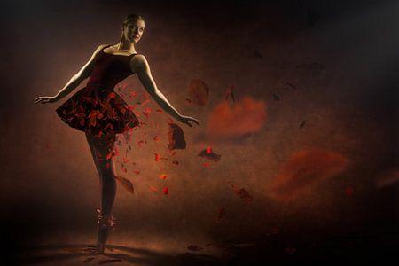 Rode ballerina van Arjen Roos