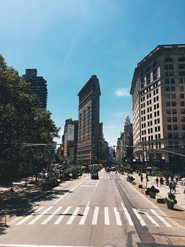 Flatiron Building New York van Puck vn