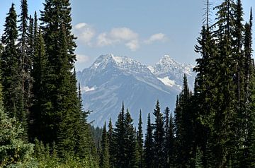 Mooi bergpanorama in Revelstoke, Canada van Jutta Klassen