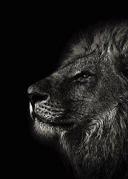 Löwe Tiere Kunst #Löwe von JBJart Justyna Jaszke