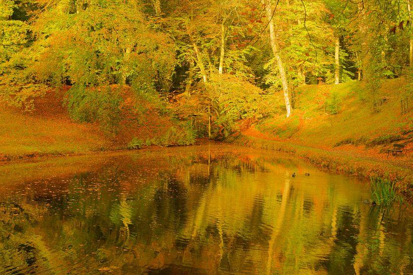 Herfst van Michel van Kooten