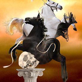 De Paarden van Diomedes van Ine Tresoor