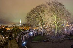 Burcht, Leiden
