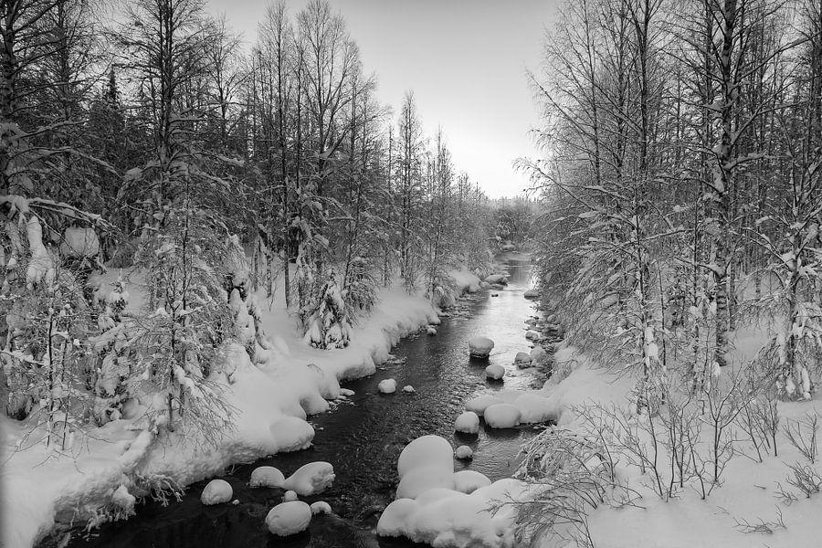 Winter in zwart en wit van Menno Schaefer