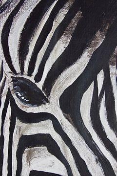 Zebra von Susanne A. Pasquay