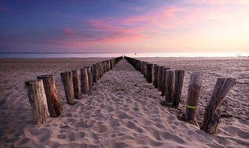 Strand von Zeeland von Nathan Marcusse